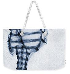 X Ray Of A Seahorse Weekender Tote Bag by American School