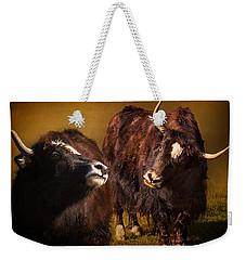 Yak Love Weekender Tote Bag by Priscilla Burgers