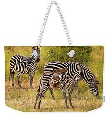 Zebras South Luangwa Weekender Tote Bag by David Stribbling