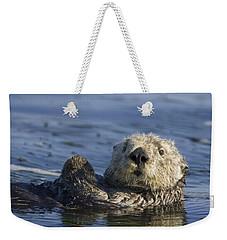 Sea Otter Monterey Bay California Weekender Tote Bag by Suzi Eszterhas