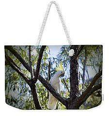 Sulphur Crested Cockatoo Weekender Tote Bag by Douglas Barnard