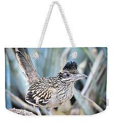 A Juvenile Greater Roadrunner  Weekender Tote Bag by Saija  Lehtonen