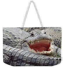 American Alligator Alligator Weekender Tote Bag by Tim Fitzharris
