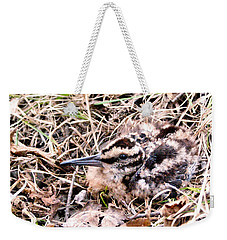American Woodcock Chick No. 2 Weekender Tote Bag by Angie Rea