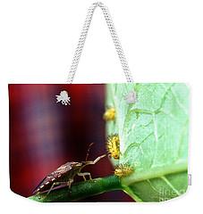 Biocontrol Of Bean Beetle Weekender Tote Bag by Science Source