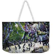 Birds At Cape St. Mary's Bird Sanctuary In Newfoundland Weekender Tote Bag by Elena Elisseeva