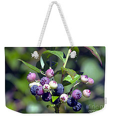 Blueberry Bunch With Raindrops Weekender Tote Bag by Sharon Talson