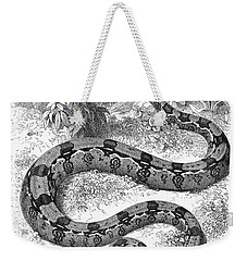 Boa Constrictor Weekender Tote Bag by Granger