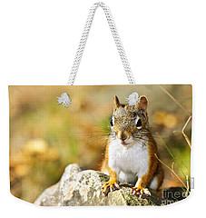 Cute Red Squirrel Closeup Weekender Tote Bag by Elena Elisseeva