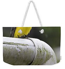 Grey-capped Flycatcher Weekender Tote Bag by Heiko Koehrer-Wagner