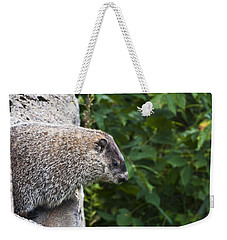 Groundhog Day Weekender Tote Bag by Bill Cannon