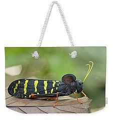 Lubber Grasshopper Guyana Weekender Tote Bag by Piotr Naskrecki