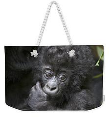 Mountain Gorilla 3 Month Old Infant Weekender Tote Bag by Suzi Eszterhas