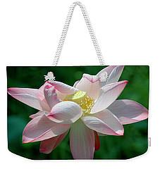 Pink Attraction Weekender Tote Bag by LeeAnn McLaneGoetz McLaneGoetzStudioLLCcom