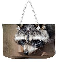 Raccoon 3 Weekender Tote Bag by Betty LaRue