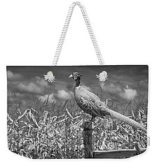 Ringed Neck Pheasant On A Fencepost By A Cornfield Weekender Tote Bag by Randall Nyhof
