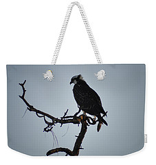 The Osprey Weekender Tote Bag by Bill Cannon