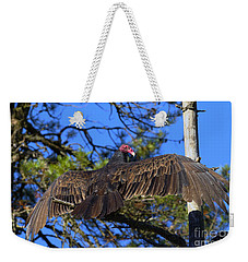 Turkey Vulture With Wings Spread Weekender Tote Bag by Sharon Talson
