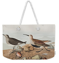 Red Backed Sandpiper Weekender Tote Bag by John James Audubon