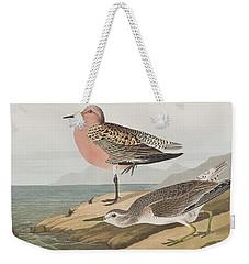 Red-breasted Sandpiper  Weekender Tote Bag by John James Audubon