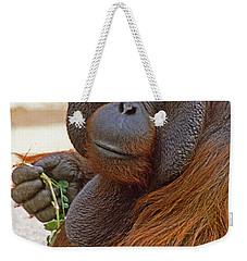Big Daddy Weekender Tote Bag by Michele Burgess