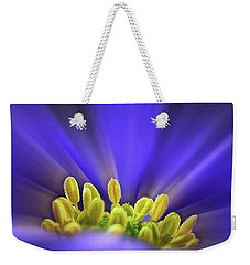 blue Shades - An Anemone Blanda Weekender Tote Bag by John Edwards
