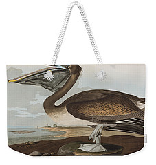 Brown Pelican Weekender Tote Bag by John James Audubon