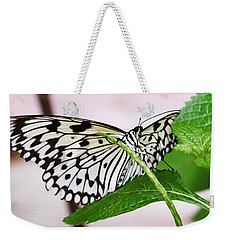 Paper Kite Butterfly No. 1 Weekender Tote Bag by Sandy Taylor
