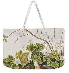 Lincoln Finch Weekender Tote Bag by John James Audubon