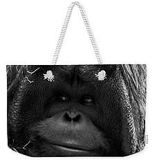 Orangutan Weekender Tote Bag by Martin Newman