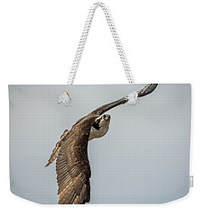 Osprey In Flight Weekender Tote Bag by Paul Freidlund