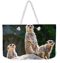 Three's Company Weekender Tote Bag by Jamie Pham