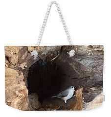 Tufted Titmouse In A Log Weekender Tote Bag by Ted Kinsman