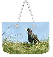A Place In The Sun Weekender Tote Bag by Fraida Gutovich