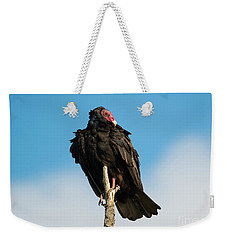 Looking For A Meal Weekender Tote Bag by Mike Dawson