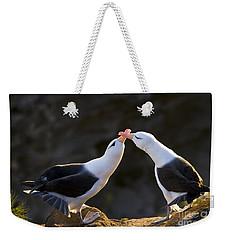 Black-browed Albatross Couple Weekender Tote Bag by Jean-Louis Klein & Marie-Luce Hubert