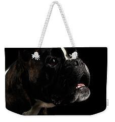Purebred Boxer Dog Isolated On Black Background Weekender Tote Bag by Sergey Taran