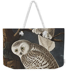 Snowy Owl Weekender Tote Bag by John James Audubon