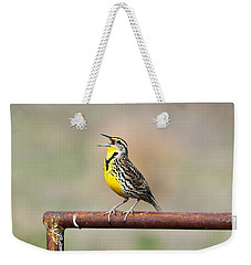 A Morning Song Weekender Tote Bag by Michael Morse