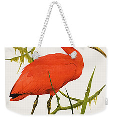 A Scarlet Ibis From South America Weekender Tote Bag by Kenneth Lilly