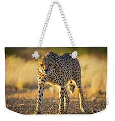 African Cheetah Weekender Tote Bag by Inge Johnsson