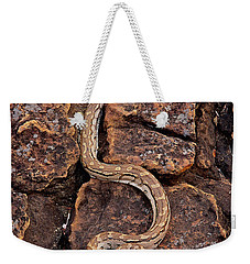 African Rock Python Weekender Tote Bag by John Cancalosi