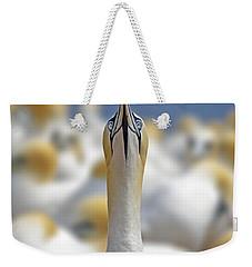 Ahead Weekender Tote Bag by Tony Beck