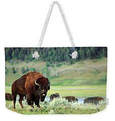Angry Buffalo Weekender Tote Bag by Todd Klassy