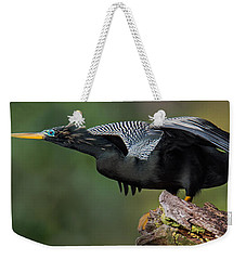 Anhinga Anhinga Anhinga, Costa Rica Weekender Tote Bag by Panoramic Images