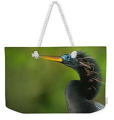 Anhinga Anhinga Anhinga, Tortuguero Weekender Tote Bag by Panoramic Images