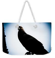 Astral Pigeon Weekender Tote Bag by Loriental Photography