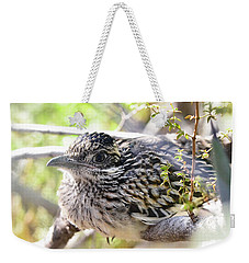 Baby Roadrunner  Weekender Tote Bag by Saija Lehtonen