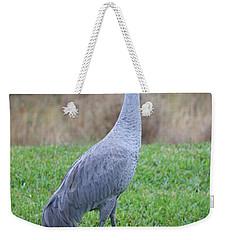 Beautiful Sandhill Crane Weekender Tote Bag by Carol Groenen
