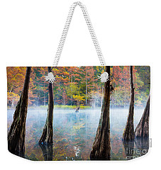 Beavers Bend Cypress Grove Weekender Tote Bag by Inge Johnsson